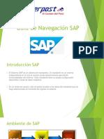 05 Guia de Navegación SAP SERPPOST