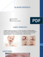 LABIO-Y-PALADAR-HENDIDO OK.pptx  .pptx
