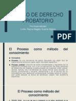 Curso de derecho probatorio - Estudiantes  (1)