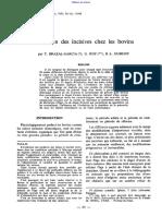 Evolution_des_incisives_chez_les_bovins
