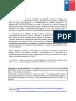 Modelo-programa-preventivo