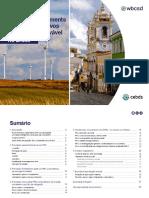 WBCSD_PPA_Brazil_Guide (1).pdf