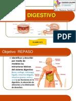 repaso 5°A sistema digestivo 5°