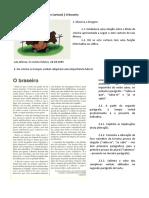 Crónica e Cartoon - o braseiro (Francisco Moita Flores e Luís Afonso)