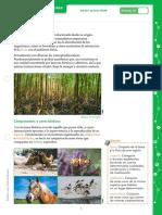CCNN_6EGB_Ecosistemas