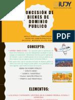 Concesión de bienes de dominio publico