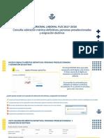 Informacion-meritos-definitivos-y-preseleccionados_4005
