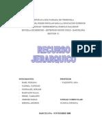 TRABAJO  RECURSO JERARQUICO