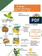 INTERACCIONES MICROBIANAS PARTES 2 PERU