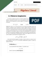 1.1 Números imaginarios _ 1