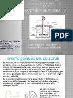 laboratorio Nº 5 EFECTO CONSUMO COLECTOR ANTIMONITA