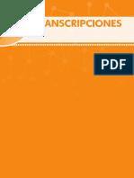 NPrisma_B2_Transcripciones