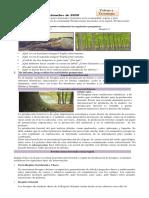 5to grado  tarea  17 09 20.pdf