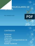 basesmolecularesdelavida-.pptx