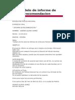 Modelo de informe de recomendacion