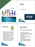 307587863-Discapacidad-Intelectual-Intervencion.pdf