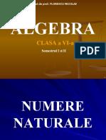 126188706 Algebra Clasa a Vi A