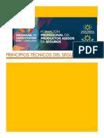 Manual de Principios Técnicos del Seguro 2017.pdf