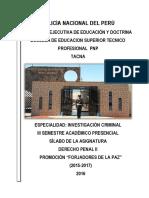 SILABO DE DERECHO PENAL .pdf