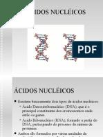 21474758-Acidos-Nucleicos