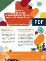 Diseño de las organizaciones para el entorno internacional