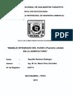 22711.pdf