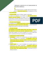 resumen mype