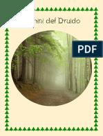 Domini del Druido.pdf