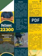 Propostas Baltazar Fonseca 22300