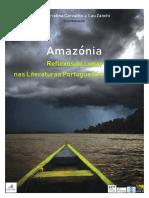 ! AMAZÓNIA ORIGINAL para RUNePURE (1).pdf