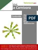 cuidados_planta_venus
