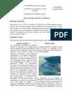 Informe Extracción Del Adn en La Cebolla
