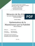 Optimisation de la Maintenance par la Fiabilité OMF en industrie