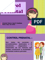 controlprenatal salud
