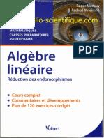 Algèbre linéaire - Réduction des endomorphismes.pdf