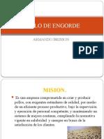 POLLO DE ENGORDE (1)
