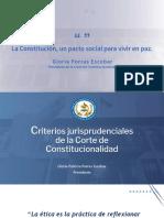 Criterios Jurisprudenciales - CANG- 18062020