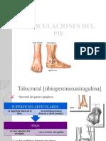 Articulaciones del pie.