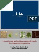Presentación Alicia Castillo.pdf