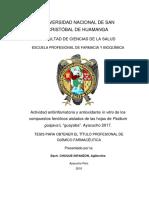 BORRADOR-ANTIINFLAMATORIO-Y-ANTIOXIDANTE%202018-8888%20(3)