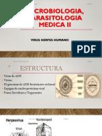 (Aula 02) Virologia Unidad II. Dra. Sandra Gonzalez . Micro 2 D.pdf