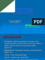 Presentation enzim