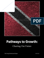 Pathways to Growth_Charting Our Future 2.pdf