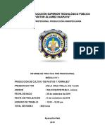 informe de pastos y forrajes.docx