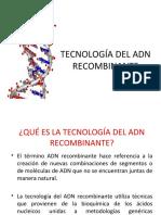 clase-tecnologc3ada-adn-recombinante