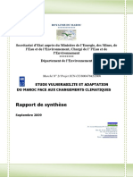 Rapport_synthèse ver  27 oct 2009