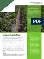 antranosis.pdf
