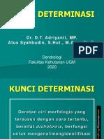 Kunci Determinasi - Dendrologi.pdf