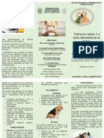 NUTRICION CANINA TRIPTICO FINAL CORREGIDO