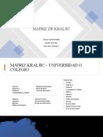 Presentacion Matriz Kraljic